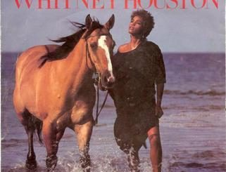 Whitney Houston- Saving All My Love For You Download